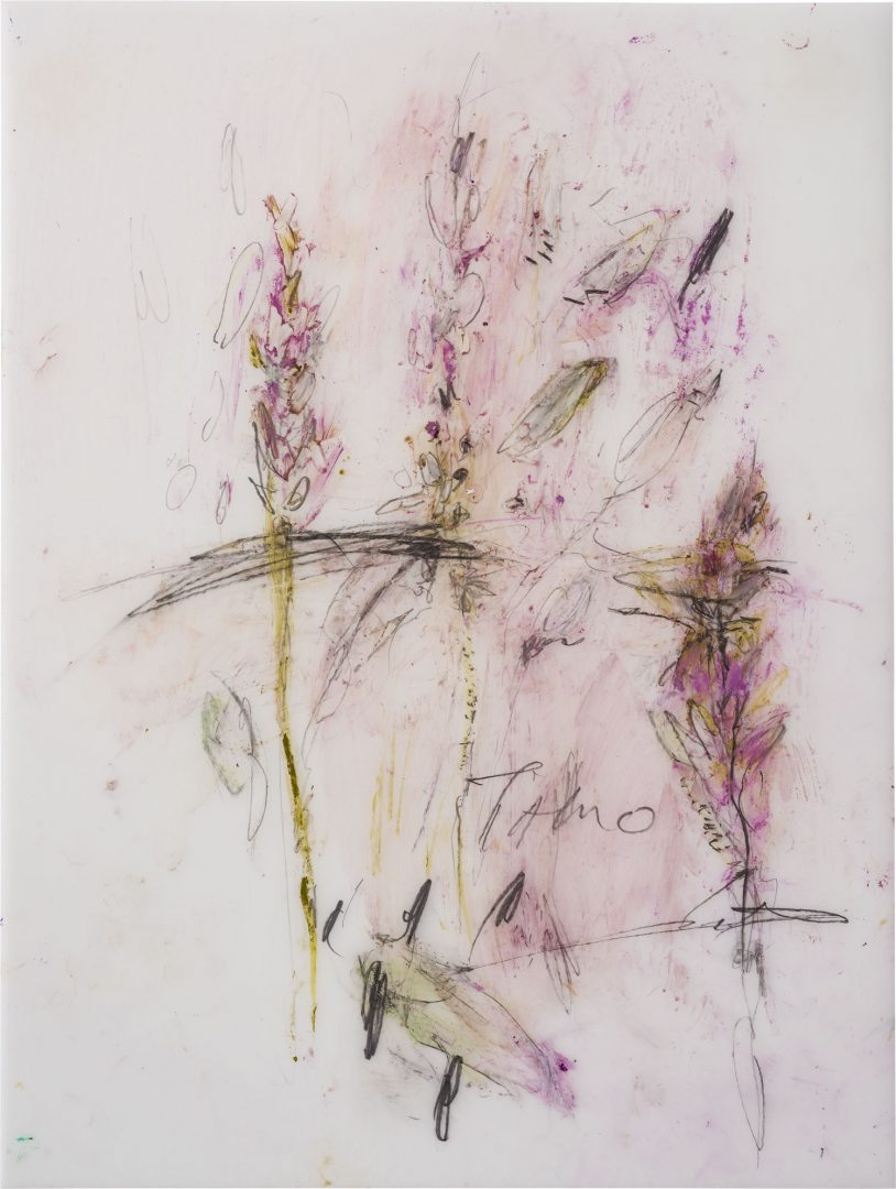 Lulu Flowers<br />