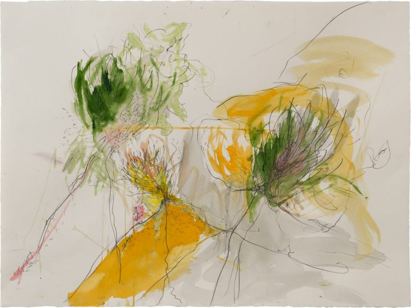 Thorns and flowers<br /> Mixed media on paper<br /> 77X60 cm