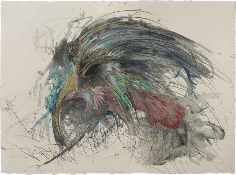 The bird that doesn't know me <br /> Mixed media on paper<br /> 77X60 cm
