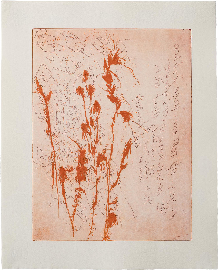 Etching & Monotype
