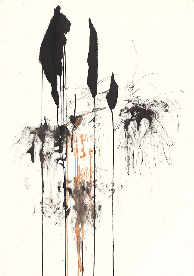 Spider<br /> Ink on paper<br /> 120X80 cm